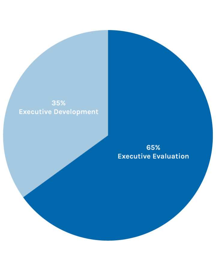 XCG Diagramm – Executive Development, Executive Evaluation