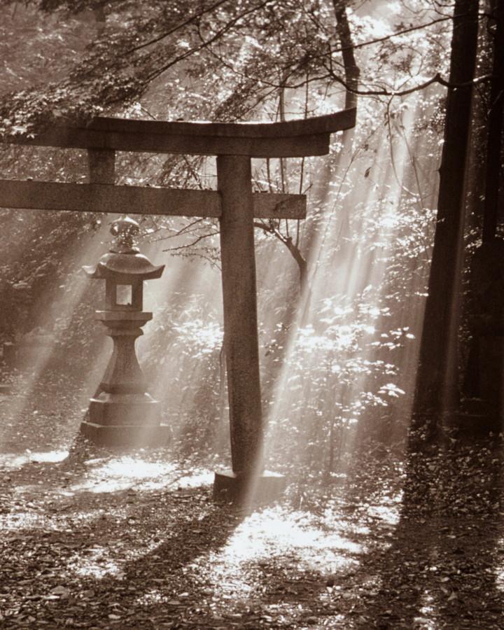 xcg Ehre– japanisches Tor
