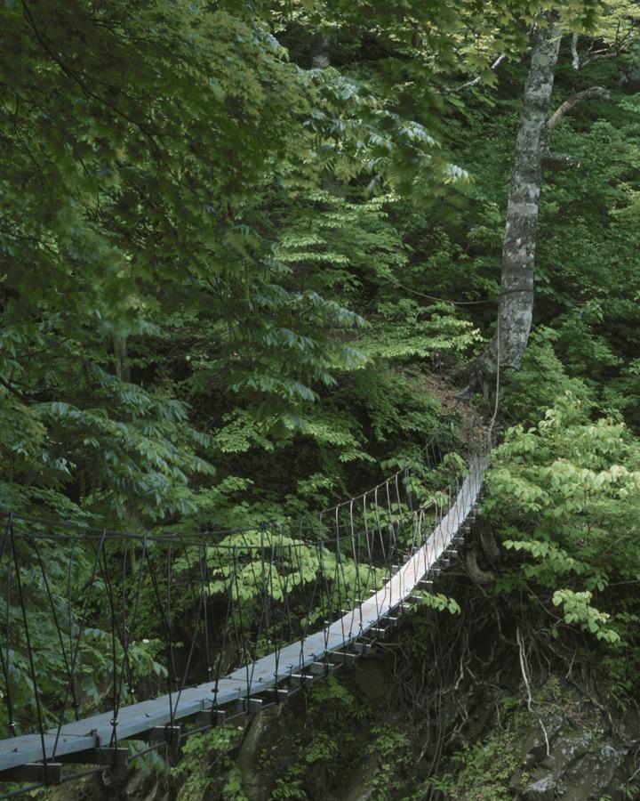 xcg Mut – Hängebrücke